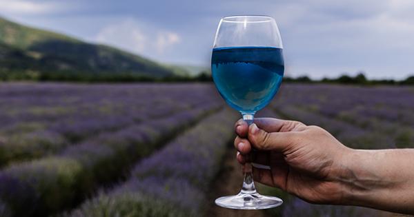 Во Франции появилось уникальное голубое вино: как делают и цена