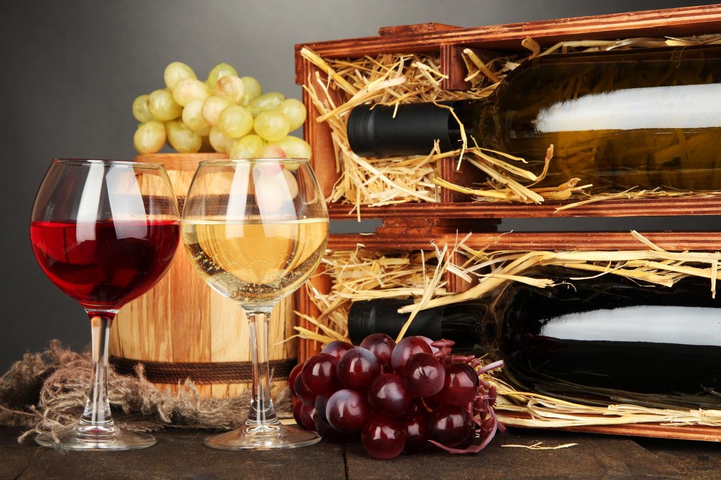 Отличия вин старого и нового света