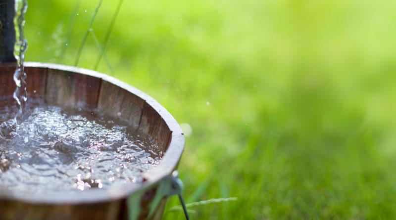 Вода для браги – какая лучше?
