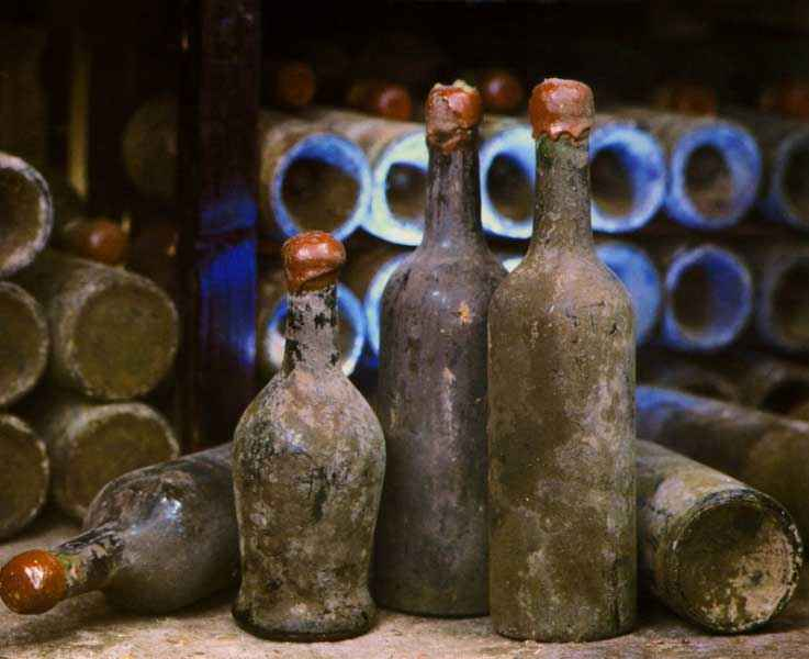Общая история виноделия