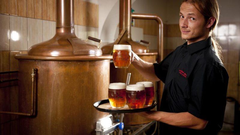 Число пивоварен в ЕС превысило 10 тысяч