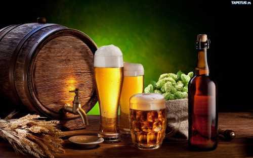 Пивная традиция украинцев: история хмельного напитка