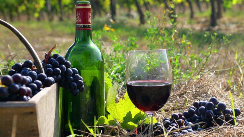 История французского вина и виноделия