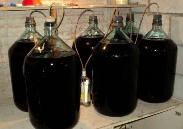 Почему вино перестало бродить? Наиболее вероятные причины