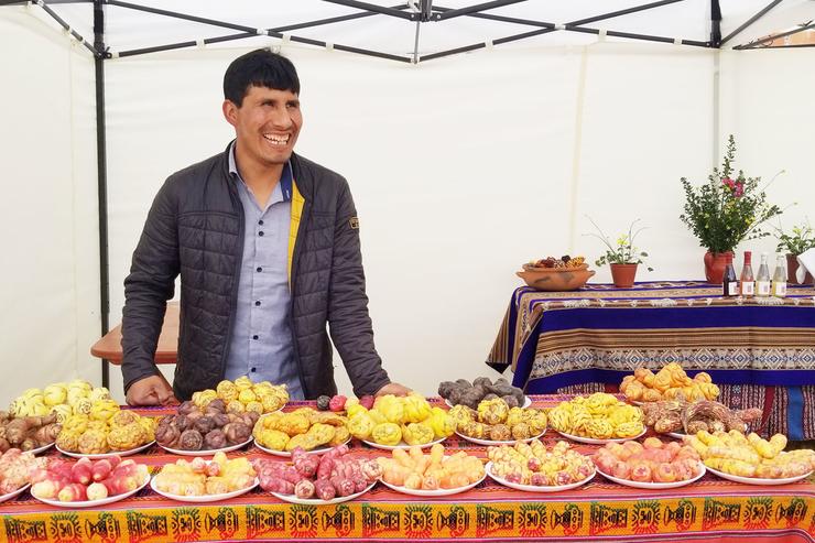 Перуанский фермер создаёт крафтовое «вино» из высокогорного «картофеля»