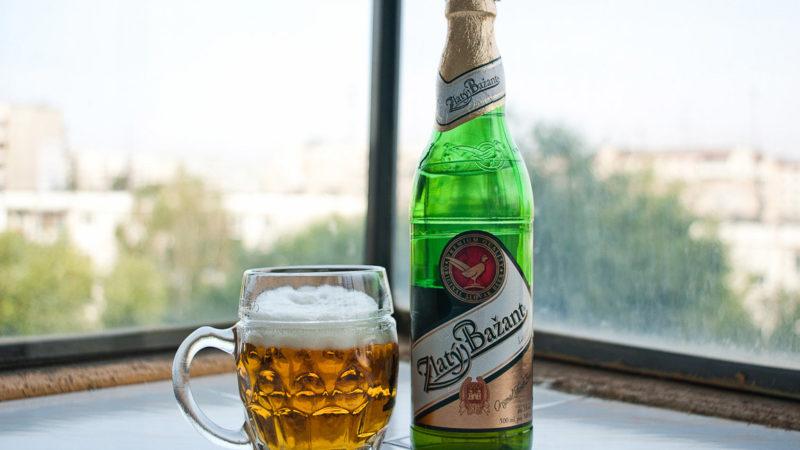 Пиво Zlaty Bazant (златый базант): история, марки и сорта