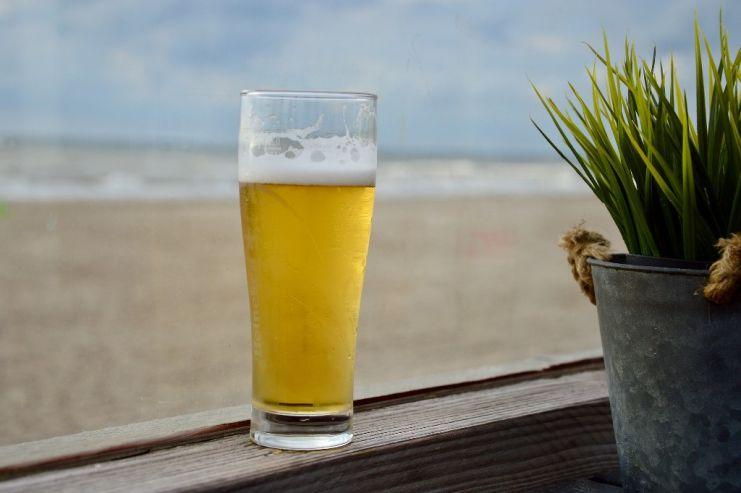 Как скопировать любимый сорт пива дома