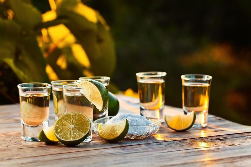 Состав текилы — из чего делают мартини и что входит в его состав
