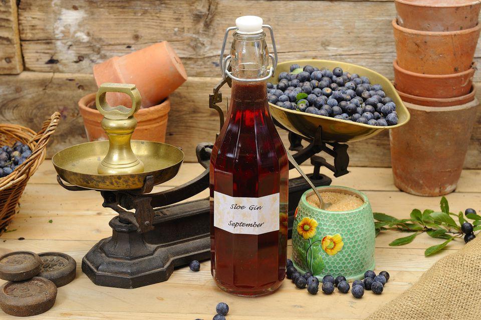 Как сделать Терновый джин Sloe Gin?
