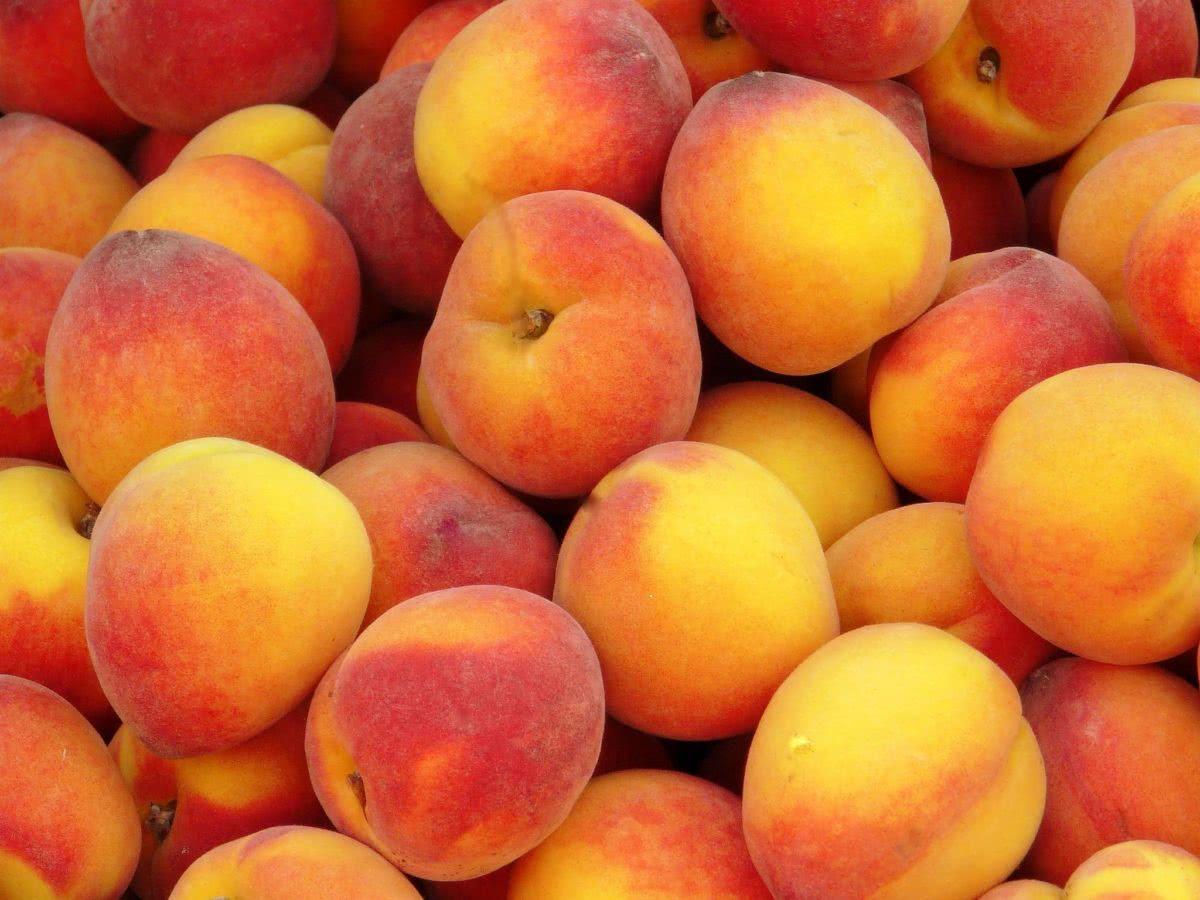 Персиковый ликер: как сделать в домашних условиях