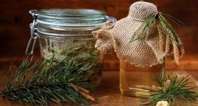 Чудо-средство против инсульта: рецепт настойки из сосновых шишек