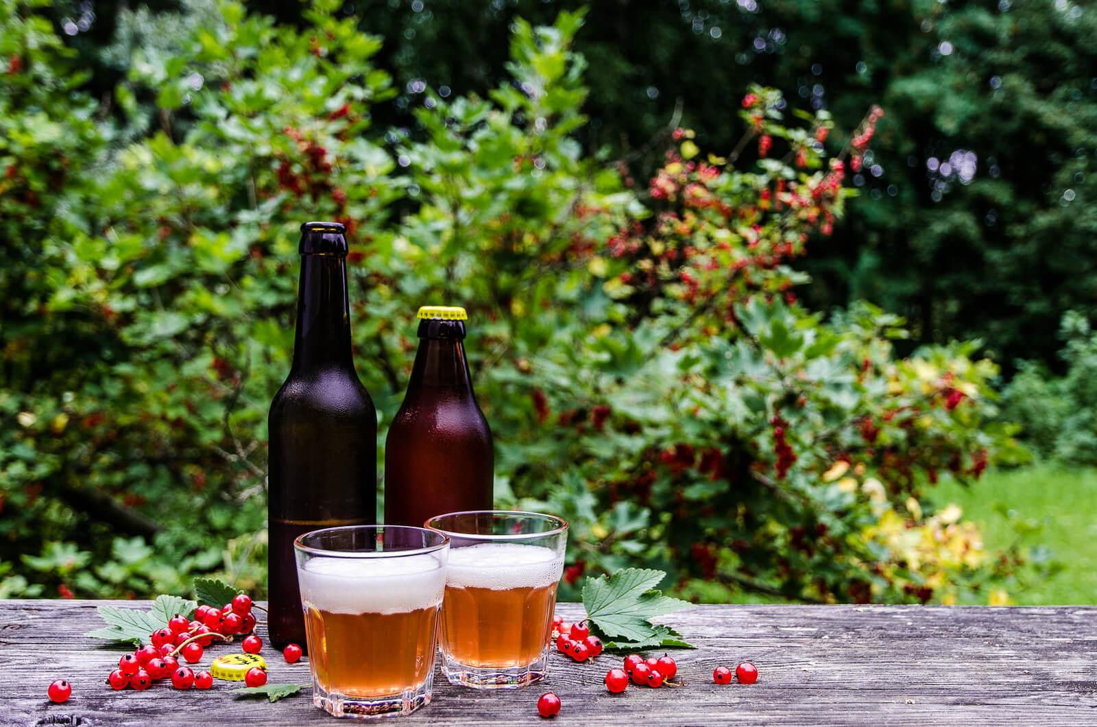 Кислое и дикое пиво: в чём разница?