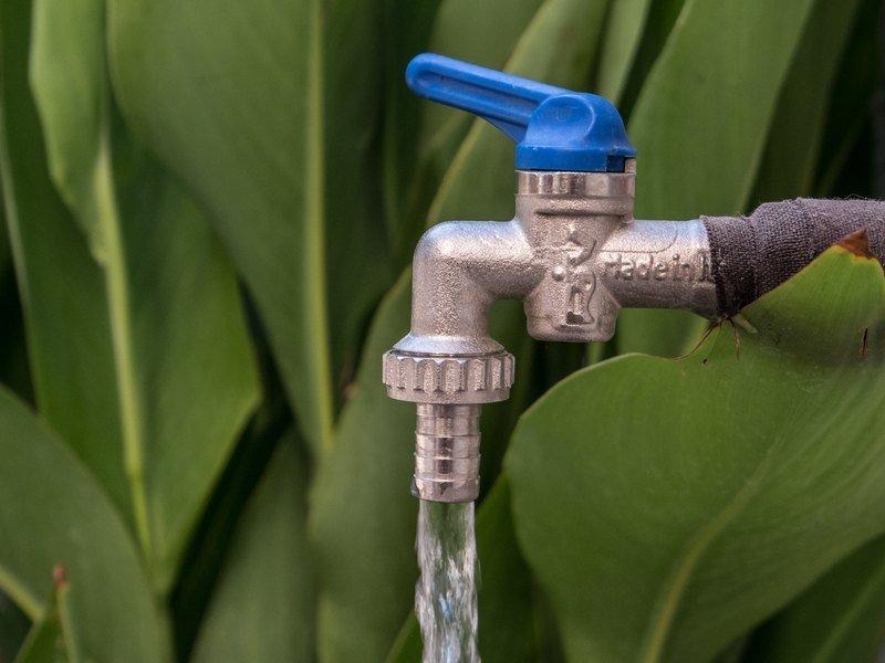 В Индии из водопроводных кранов вместо воды полился алкоголь