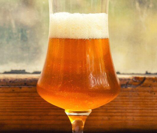 Дикий эль – особенное «скисшее пиво»