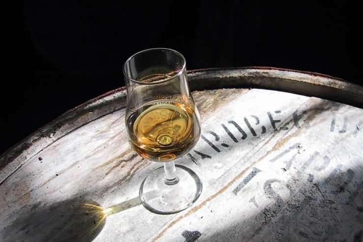 Ученые придумали способ выявления поддельного виски