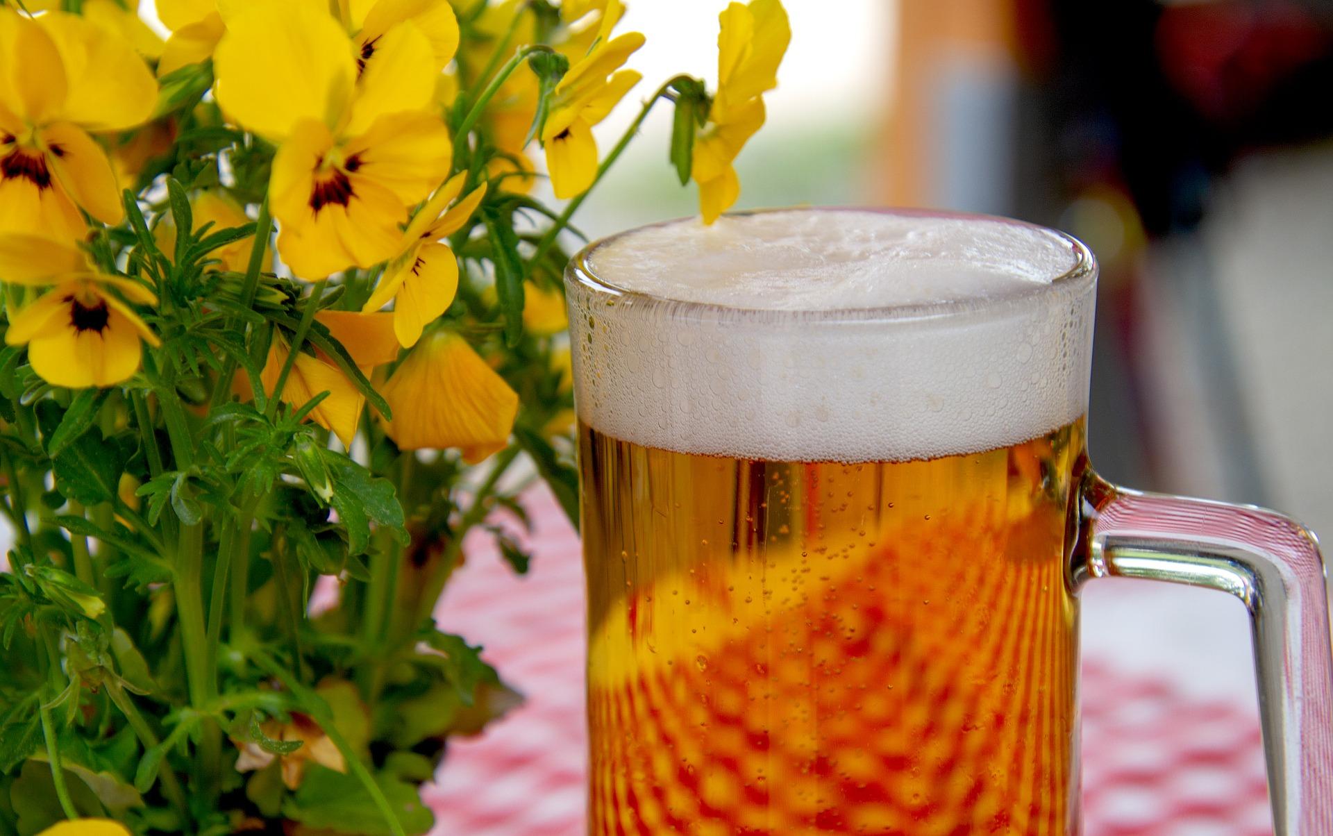 Пиво из березового или кленового сока.