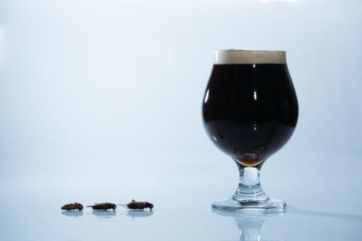 В Японии выпустили пиво из сверчков