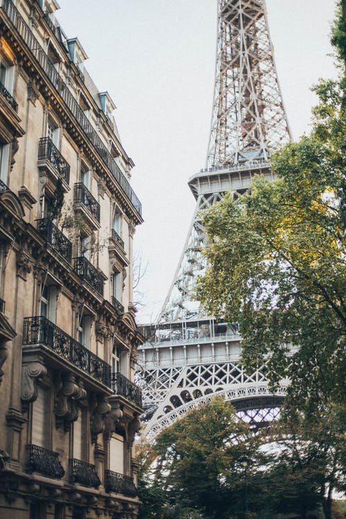 Французские виноделы намерены снизить цены на импорт