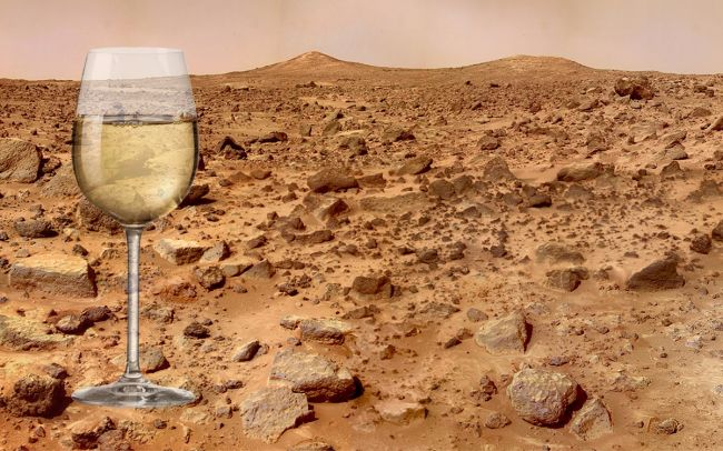Вино на Марсе? Старейшая в мире винодельческая страна хочет, чтобы это случилось