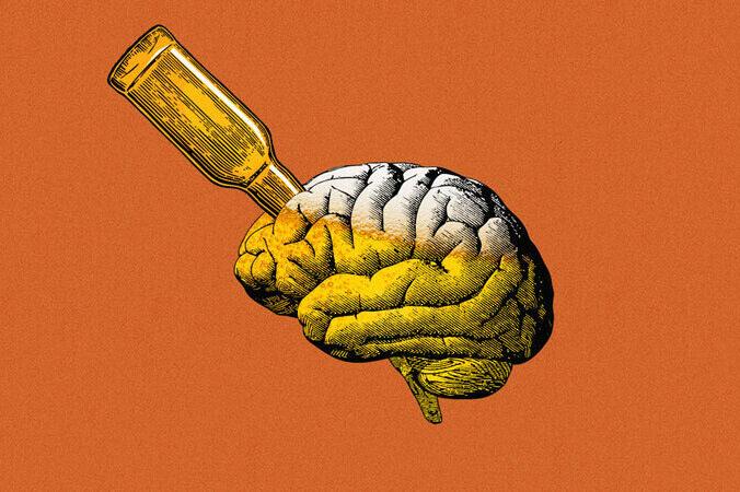 Учёные: ежедневное употребление алкоголя может улучшить работу мозга