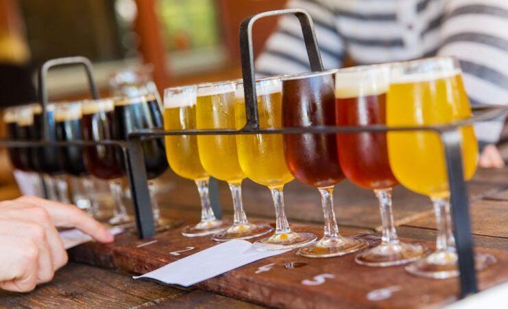 WSET создаст курсы для специалистов по пиву