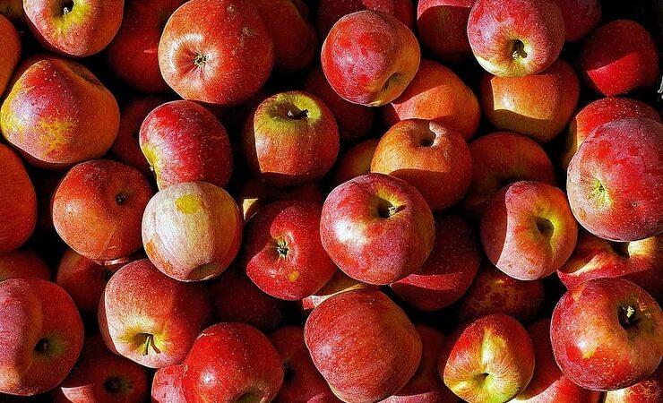 Принадлежащая Brewdog сидродельня Hawkes просит британцев не выбрасывать яблоки