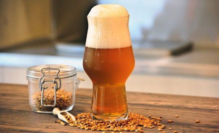 Ученые: в Бельгии из-за потепления производство пива может сократиться на 40%