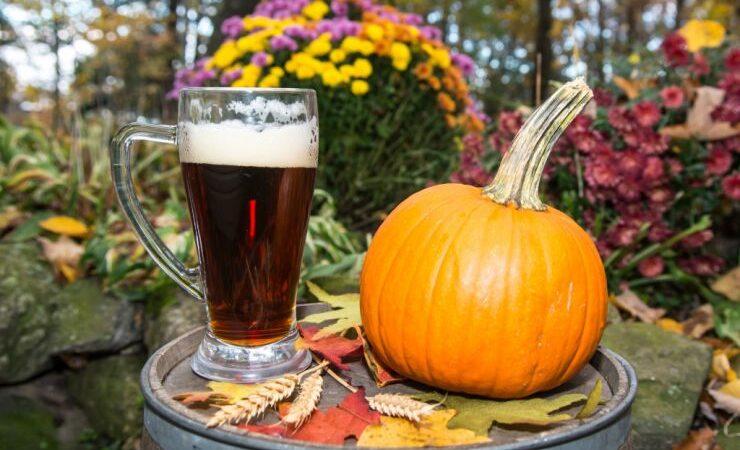 Осеннее сезонное пиво: характеристики стиля и рецепт