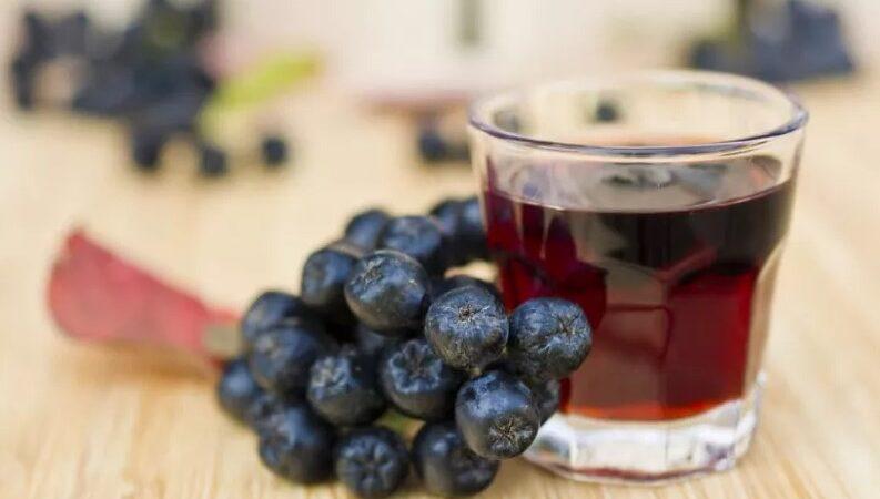 Наливка из черноплодной рябины: подборка вкуснейших рецептов