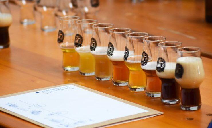 Как домашнему пивовару выявить дефекты в своём пиве?