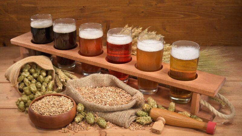 Секреты и особенности домашнего пивоварения от американских специалистов