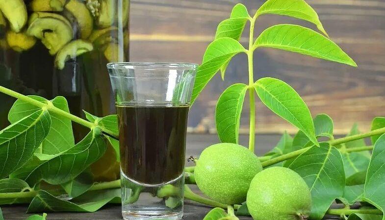 Настойка на зеленых грецких орехах: 2 простых рецепта
